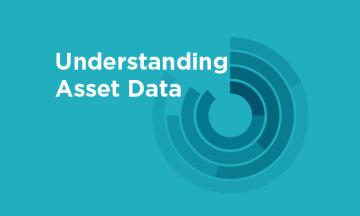 Understanding Asset Data